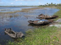 Bark canoes near Inhambane