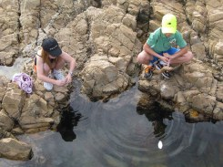 At a rock pool
