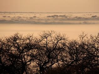 Dawn at Ndumo