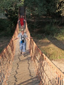 Ndumo forest trail