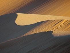 dune palette