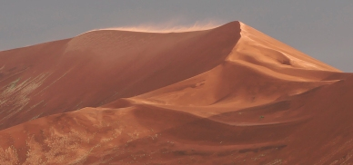 painted dune