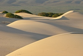 dunes and beyond