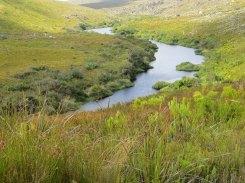 The Palmiet River