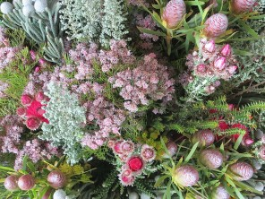 Mixed fynbos