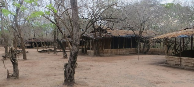The camp at Gorongosa