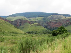 Lush Highveld scenery
