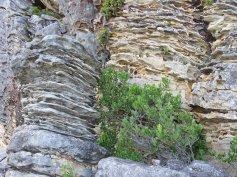 Wonderful rock formations