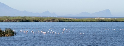 A view across False Bay