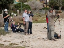 Some of the birders in attendance