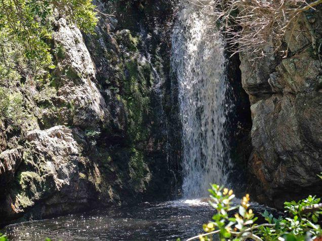 The waterfall at Harold Porter