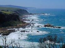 The coast off Pezula Estate