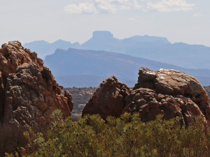 Looking towards the Cederberg