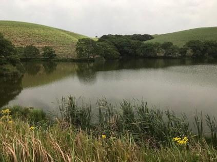 A lake at The Chase