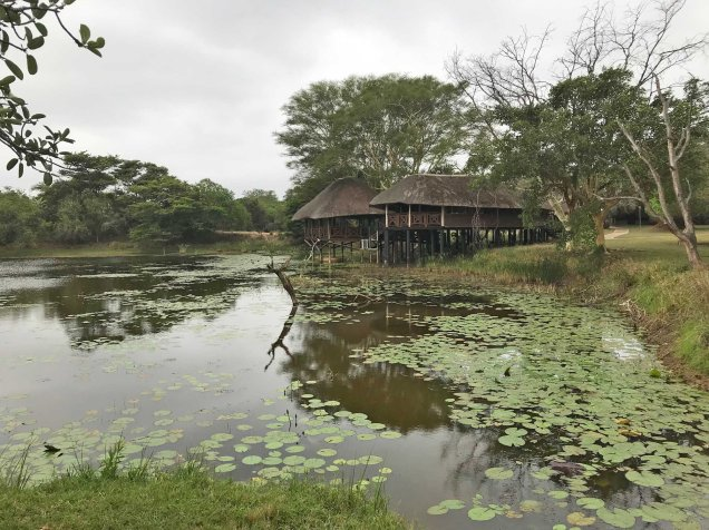 The bird hide at Bonamanzi